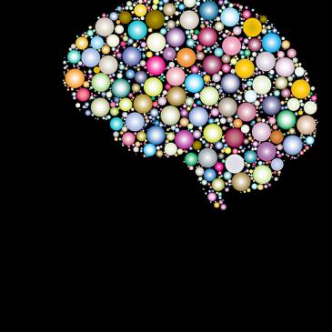 Rabdomancija 5 – kemija u mozgu