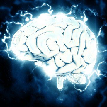 Frekvencije mozga: alfa-theta ili gama stanje